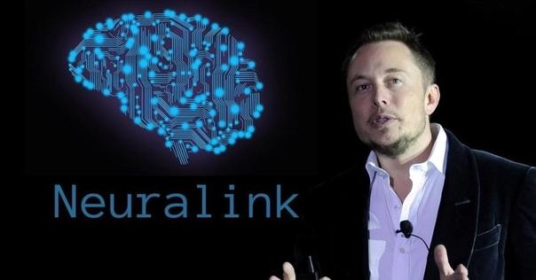 Компания Neuralink, основанная Илоном Маском - провела успешную имплантацию беспроводных компьютерных чипов в мозг трех свиней.