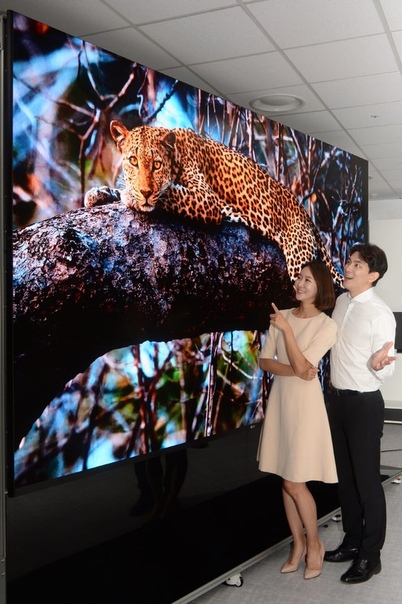LG представила огромный телевизор с диагональю экрана 163 дюйма - Magnit.