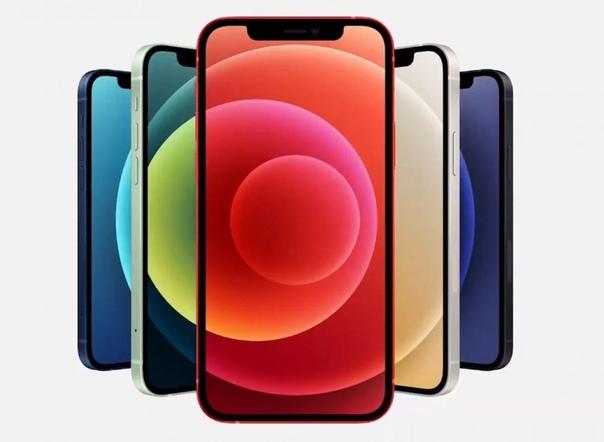 Apple назвала стоимость замены экрана iPhone 12.  По заявлени...